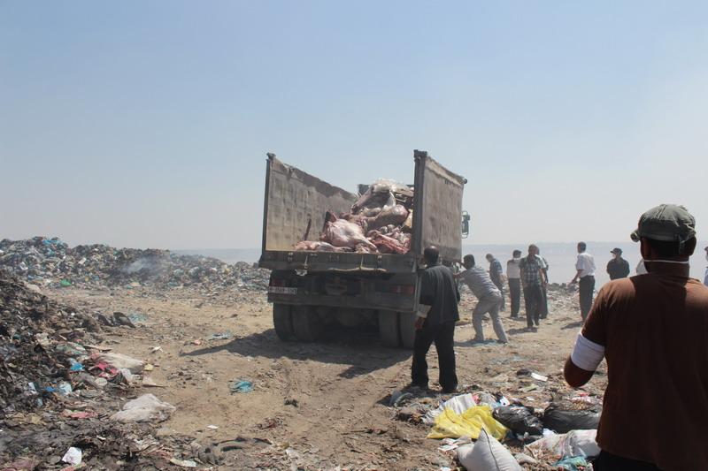 بلدية رفح تتلف 20 طن من المواد الفاسدة خلال العام 2013